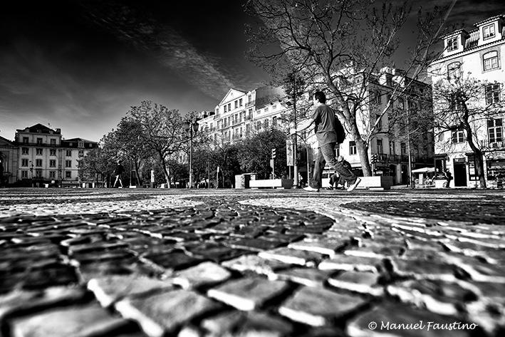 © M.Faustino__LMF1698